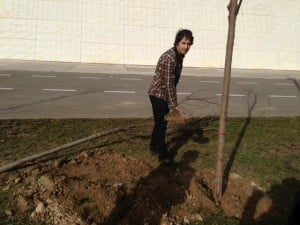 Acantho Plays A Part In Planting Trees 4